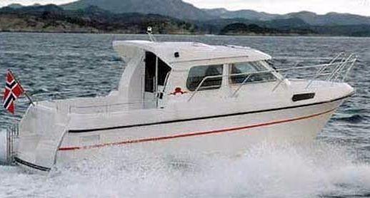 1999 Nb 8700