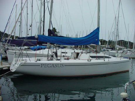 2004 Northshore 369