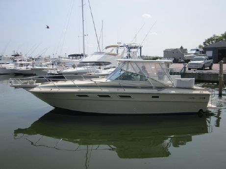 1981 Sea Ray 31 Express Cruiser