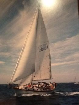 1984 Shannon Cutter