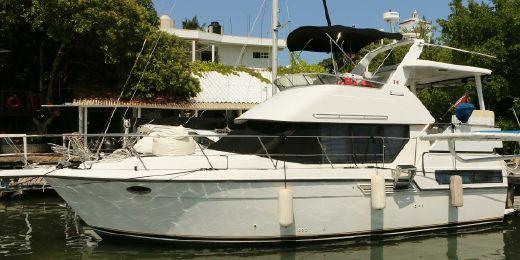 1993 Carver Yachts 350 AFT CABIN