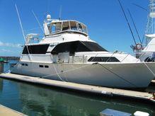 1991 Ocean Motor Yacht 56