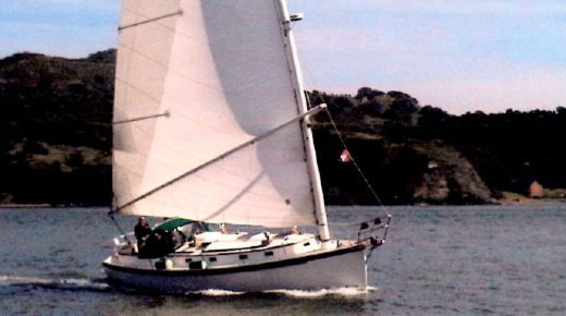 1987 Nonsuch 36