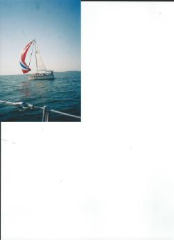1986 Seidelmann 295