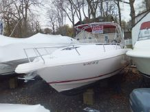2005 Intrepid 310 Walkaround
