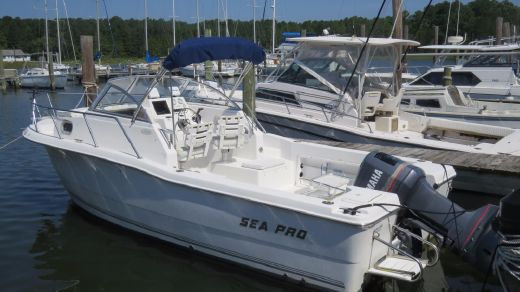 2003 Sea Pro 235 Walk Around