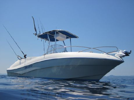 2006 Quicksilver 635 Commander