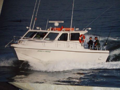 2006 Sea Hawk Fish/Dive/Passenger