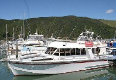 1988 Carey Offshore 40