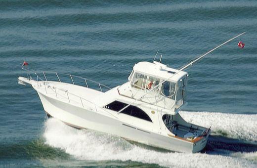1988 Jersey 42 Convertible Sportfisherman