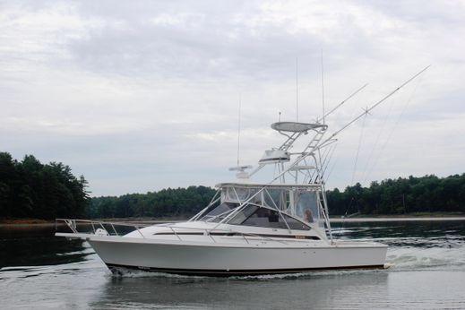 1997 Blackfin Combi 33
