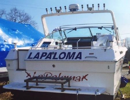 1989 Sea Ray 300 Express Cruiser