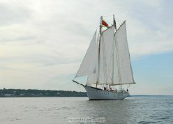 photo of  93' Fiberglass Passenger Schooner - Certified for 100 Passengers