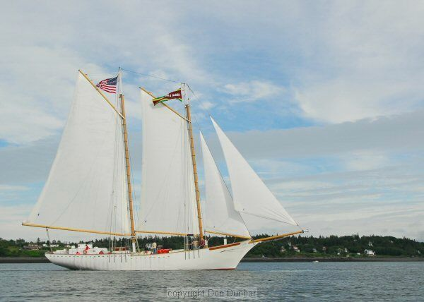Tall ships for sale horizon ship brokers inc for Sips for sale