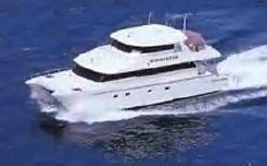 2001 Wendon 790 Power Catamaran