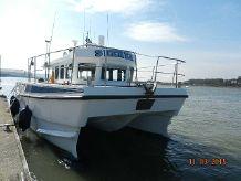 2009 Blyth Workcat 10M