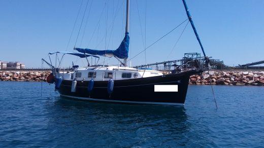 1988 Myabca Delfin 31