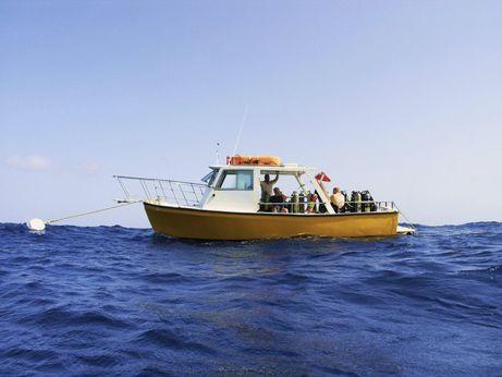 1985 Burpee Dive Boat