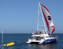 2008 Custom Tropic Composites Niominka 47