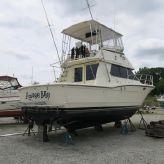 1984 Hatteras 36 Convertible