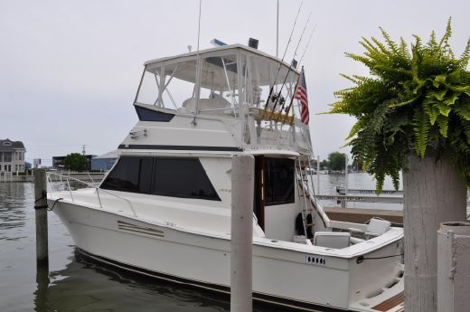 1988 Viking 35 Convertible