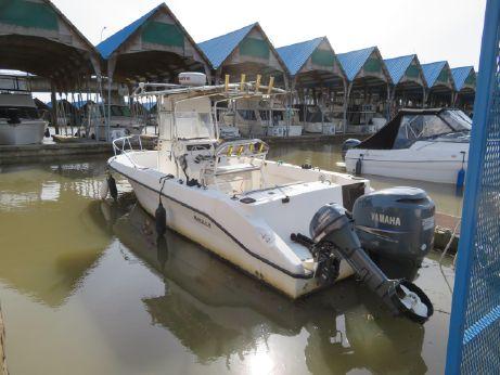 2000 Angler 252F