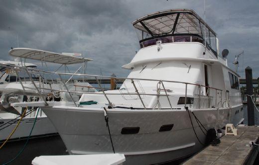 1987 Sea Ranger 56