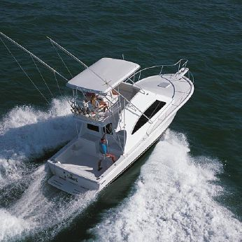 2004 Luhrs 33 Convertible