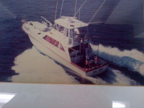 1983 Ocean Super Sport Flybridge