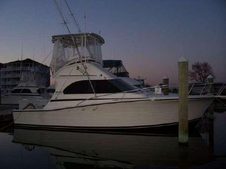 1990 Luhrs 320 Tournament