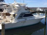 photo of 43' Sea Ray Flybridge Convertible