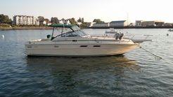 1982 Sea Ray Express Cruiser