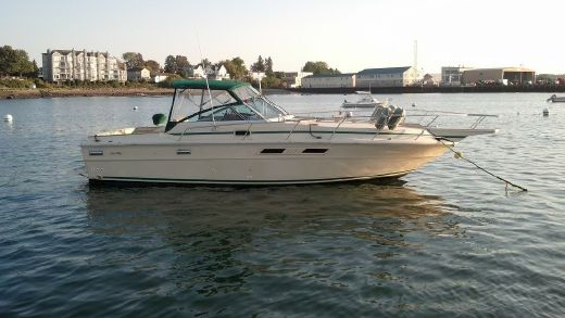 1982 Sea Ray Express Cruiser