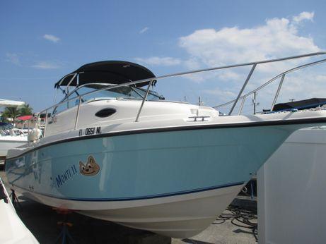 2007 Seaswirl Striper 2101 Walkaround OB