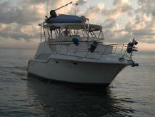 1991 Cruisers Yachts 4285 Express Bridge