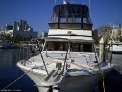 Photo of 35' Viking 35 Sportfish
