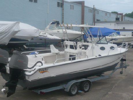 2002 Twin Vee 260