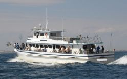 photo of  77' Lydia Party Fishing Boat