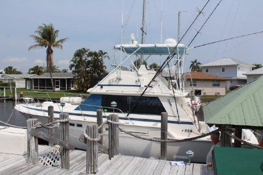 1980 Bertram 42 Sport Fish
