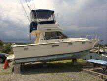 1982 Tiara 3100 Fly Bridge