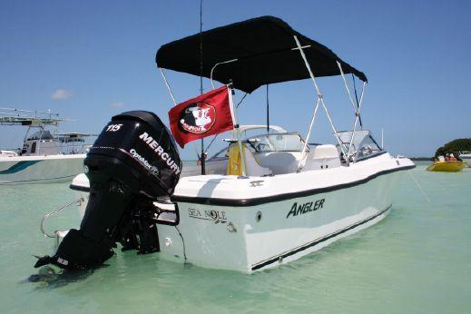 2007 Angler 180 DC