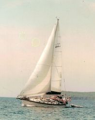 1983 Baba 40