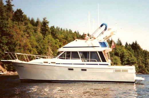 1988 Bayliner 3218 Motoryacht
