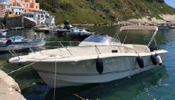 2009 Kelt WHITE SHARK 298