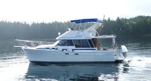 1986 Bayliner 3270