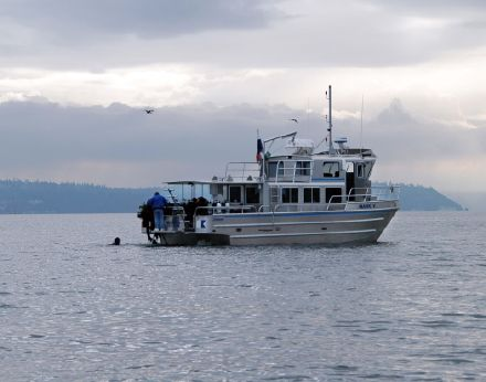 2008 Armstrong Marine 41' Dive Boat