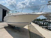1994 Sea Ray SUNDANCER 300