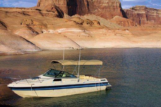 1989 Gulfstream Boats 233 Calypso Cuddy