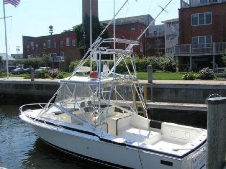 1992 Bertram 28 Moppie