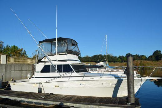 1981 Viking Yachts 35 Convertible
